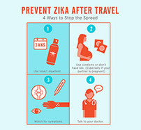 Zika Travel: 4 Part Graphic Thumbnail