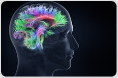 Alzheimer's Disease: Learning from the Past, Looking to the Future