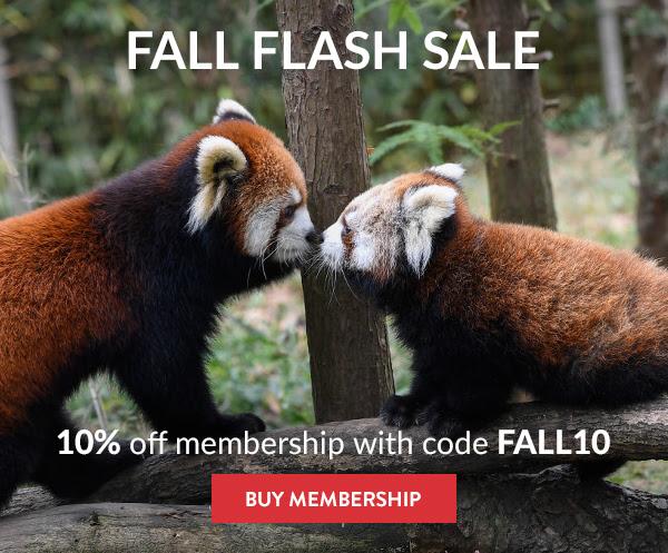 10% 0ff membership with code FALL10