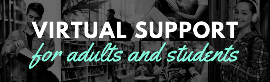 Virtual Support Labs