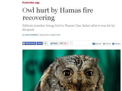Captura del diario israelí.