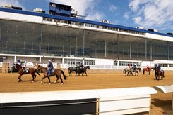 Spectatorless racing is approved to resume May 30 at Laurel Park