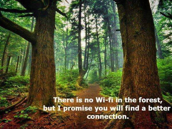 nowifiintheforest
