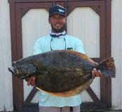 Large flounder catch
