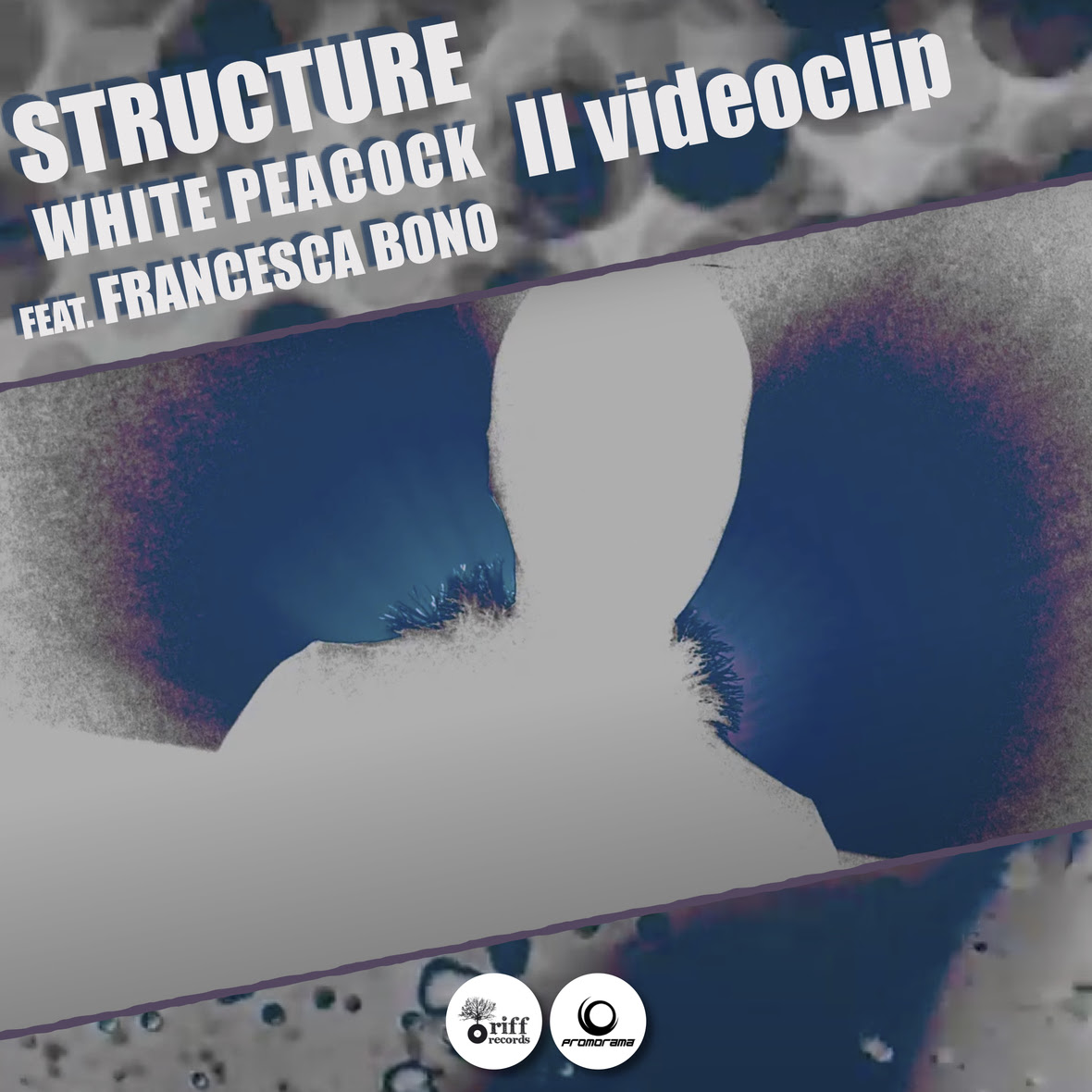 Structure - White Peacock videoclip