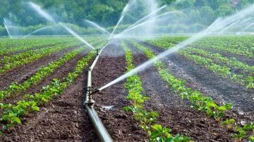 Peruanos lideran participación en América Latina sobre capacitación virtual en temas de riego agroindustrial