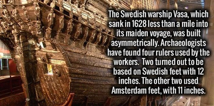 20 Weird Facts You Didn't Know You Need to Know