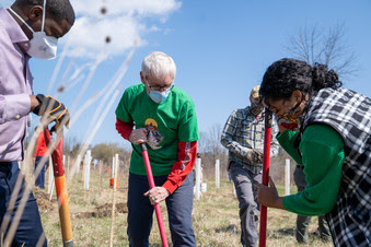Gov. Tony Evers planting a tree at Havenwoods State Forest in Milwaukee on Earth Day.