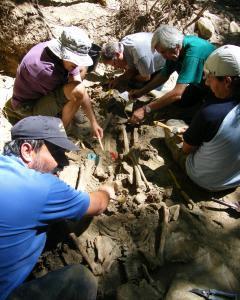 Trabajos de investigación en una fosa. Foto: Foro Cultural de la Provincia del Bierzo / Wikipedia