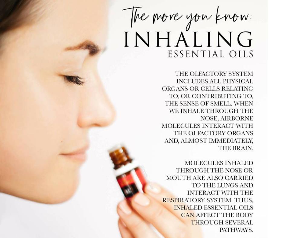 Aromatic use essential oils