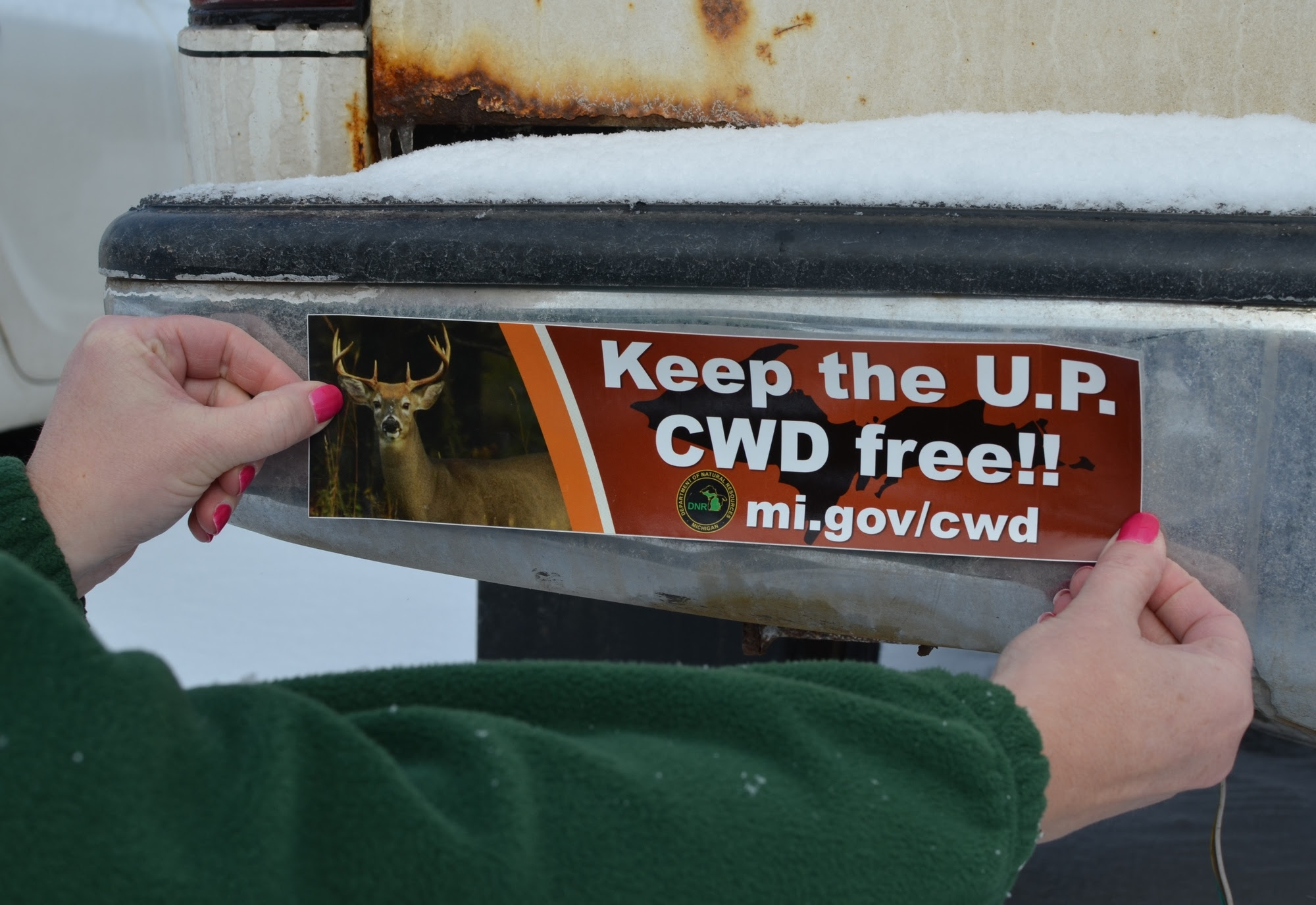 """Bumper stickers were among the education and outreach materials produced by the DNR as part of the """"Keep the U.P. CWD Free"""