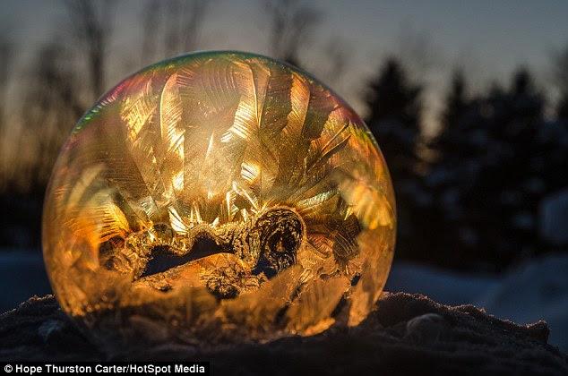 Monde intérieur: Hope Thurston Carter une capture les images après des bulles sur les jours de gel Dans le Michigan