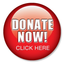 Donate Now! Button