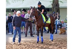Bob Baffert sends Game Winner out to train May 2 at Churchill Downs