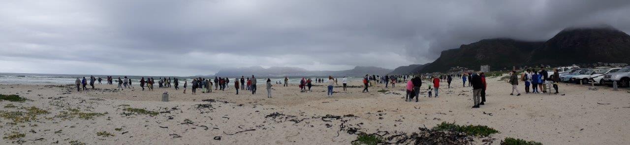 d5cc2ca7 eb9e 4091 88f9 059a8ada4222 - Results of 2018 international coastal clean-up released