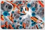 How does Antibiotics Resistance Occur?