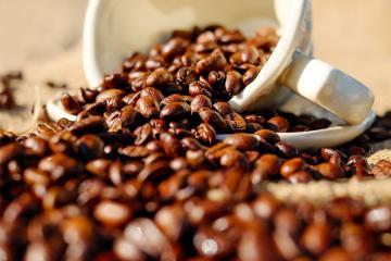 ADEX: Café peruano tiene oportunidades comerciales en Corea del Sur