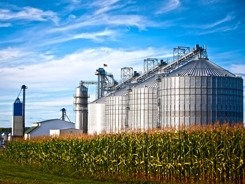 biofuel problems
