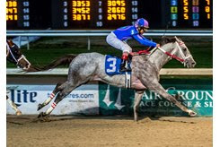 Gray Attempt wins the Sugar Bowl Stakes at Fair Grounds