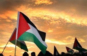 Bandera de Palestina. Font: Diego Sandoval, Flickr