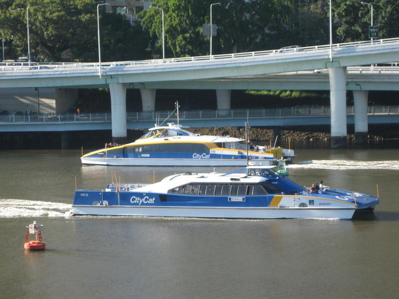 Brisbane CityCats.jpg