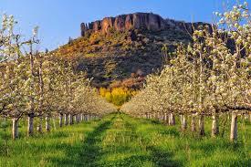 Image result for Southern Oregon