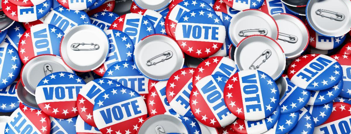 Vote pins banner .jpeg