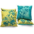 Cushions & Covers<br>50% off or more