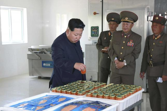 North Korean Visit