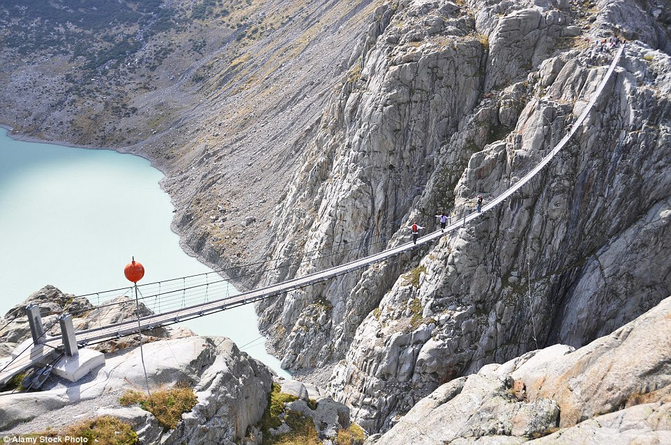 A long way to                                                      go: Trift Bridge                                                      in Switzerland is                                                      the                                                      longestpedestrian-only                                                      suspension bridge                                                      in the Alps at 557                                                      feet in length