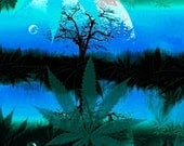 Blue Moon for a Green Moment, Consciousness in the garden (greenfaith donation)