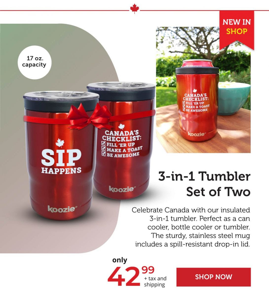 3-in-1 Tumbler set of 2
