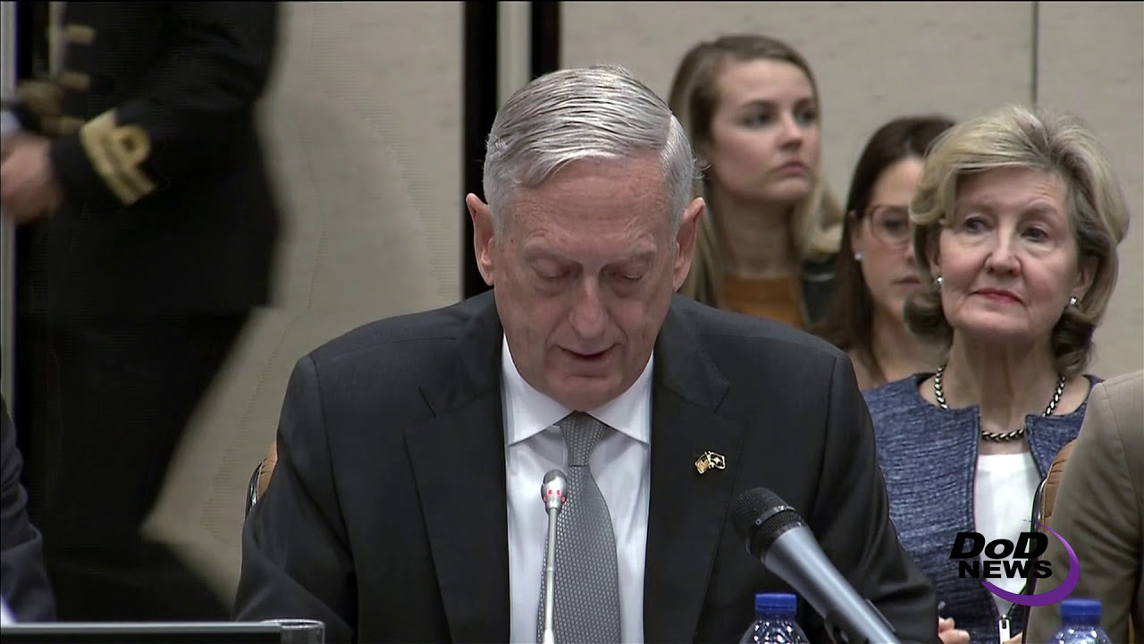 Defense Secretary Addresses NATO Ministerial
