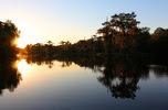 Wakulla Springs sunset by Doug Alderson