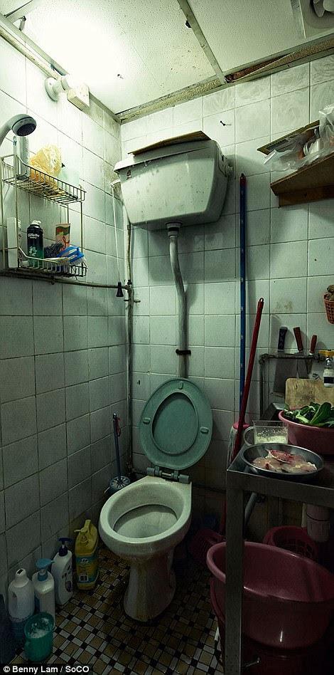 Một nhà vệ sinh có thể được nhìn thấy chỉ là một vài feet feet từ thực phẩm