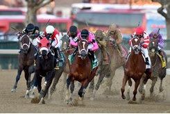 Maximum Security (pink silks) turns for home en route to winning the Cigar Mile at Aqueduct Racetrack