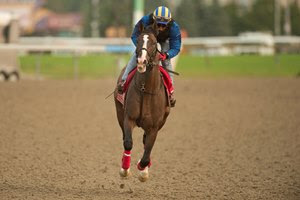 War of Will trains Sept. 15 leading up to the Woodbine Mile