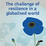 The challenge of resilience in a globalised world