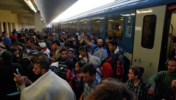 Image result for беженцы мусульмане