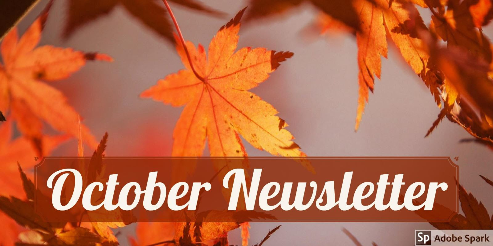 YES October 2019 Newsletter