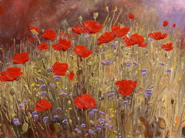 Early Summer Poppies (642x481, 489Kb)