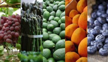 Agroexportaciones peruanas crecen en valor 20% entre enero y mayo del 2021