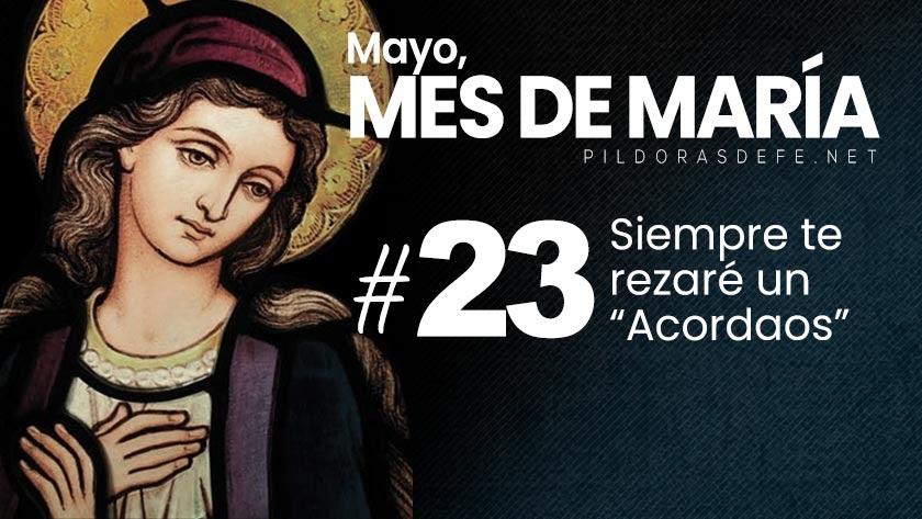 Mayo, mes de María. Día 23: Un Acordaos para invocar a la Virgen