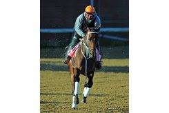 Miss Sky Warrior gallops at Churchill Downs ahead of the Kentucky Oaks May 2