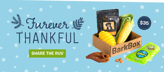 Furever Thankful Box