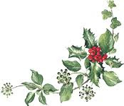 Image result for holly and ivy