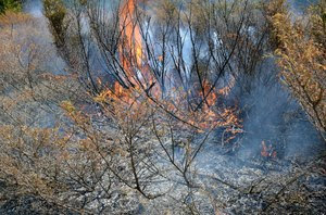 Fire can get out of hand quickly in dry conditions.