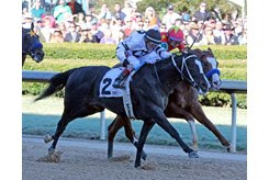 Long Range Toddy outduels Improbable to win the first division of the Rebel Stakes at Oaklawn Park