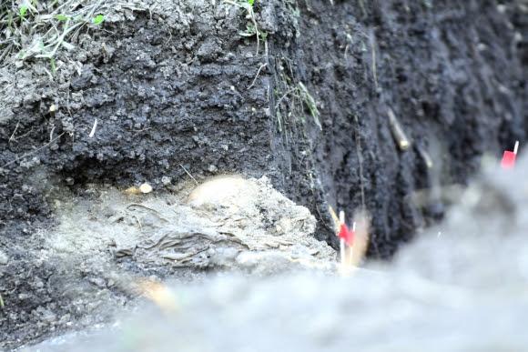Hallazgo de restos óseos en el Batallón N° 13. Foto: Marcelo Bonjour