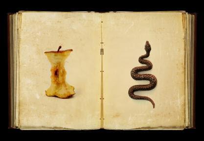 apple core, snake